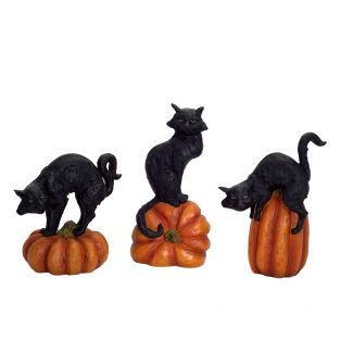 Black cat on pumpkin (Set of 3)
