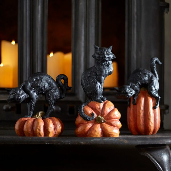 Black cat on pumpkin (Set of 3) 65498
